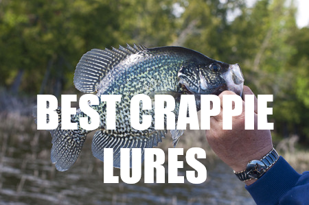 Best Crappie Lures 2017 2018 Top 13 Lures For Crappie Fishing