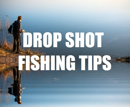 Drop Shot Fishing Tips How To Fish A Drop Shot Rig